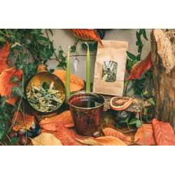 Garden herbal tea - lemon verbena, lemon balm and linden