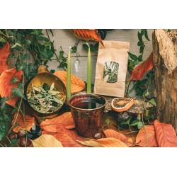Tisane du jardin - verveine citronnée, mélisse et tilleul