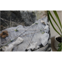 Housse de coussin Pentagram - pour coussin de 40x40 cm