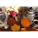 sous-verre d'automne - chêne