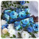 Trousse moyenne chrysanthème bleues