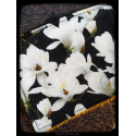 Floral - Washable demakeup pad