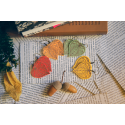 Les petites boucles de nature - Jour 1