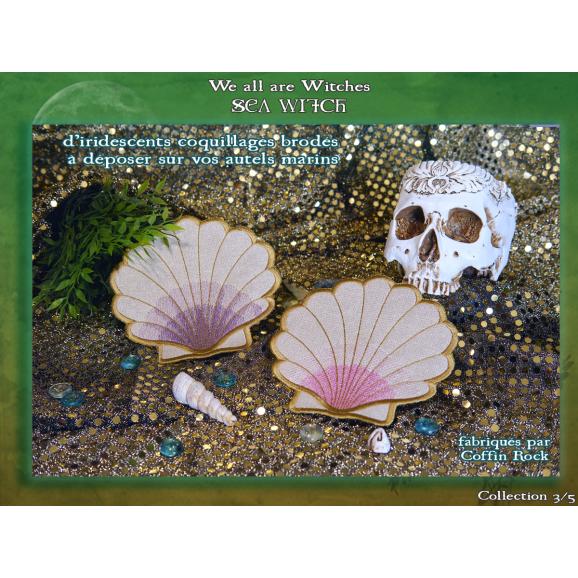 Lucky seashell