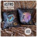 astro pillow - leo